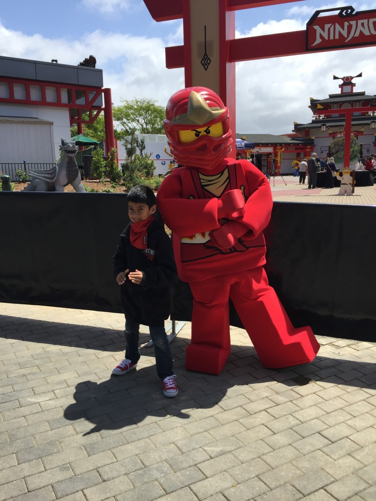 Ninjago World 15
